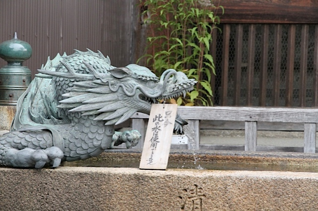 Kyoto Dragon photo