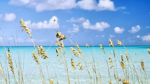 panama beach fla
