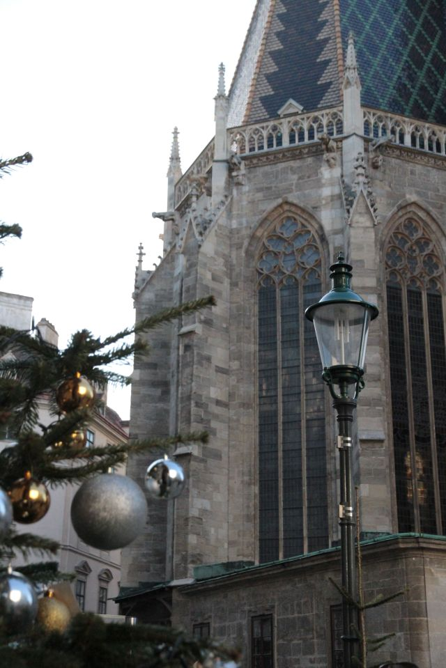 Stephansdom tree