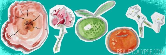tao-n2-perfume-ingredients
